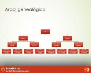 5 arbol genealogico powerpoint 3 generaciones