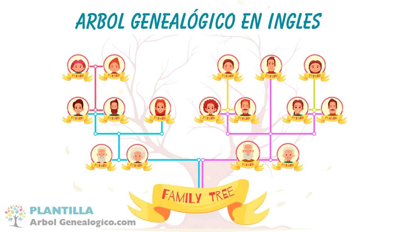 Árbol genealógico en ingles